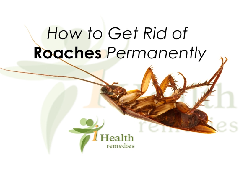 How-to-Get-Rid-of-Roaches-Permanently